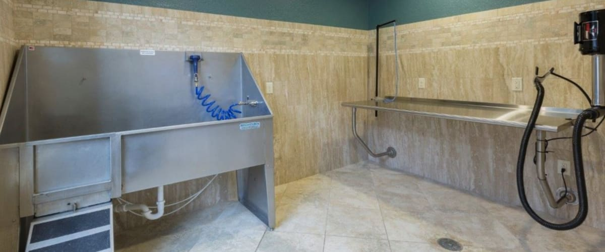 Full-sized pet wash station at The Courtney at Lake Shadow in Orlando, Florida