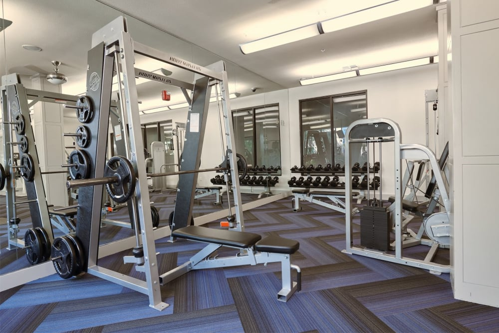 Full gym with lots of weights and workout equipment at Seville Uptown in Dallas, Texas