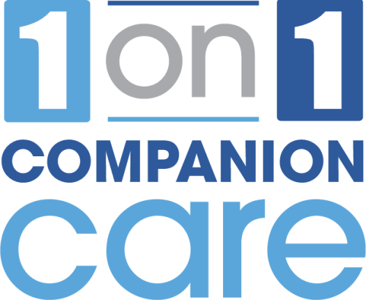 one-on-one companion care