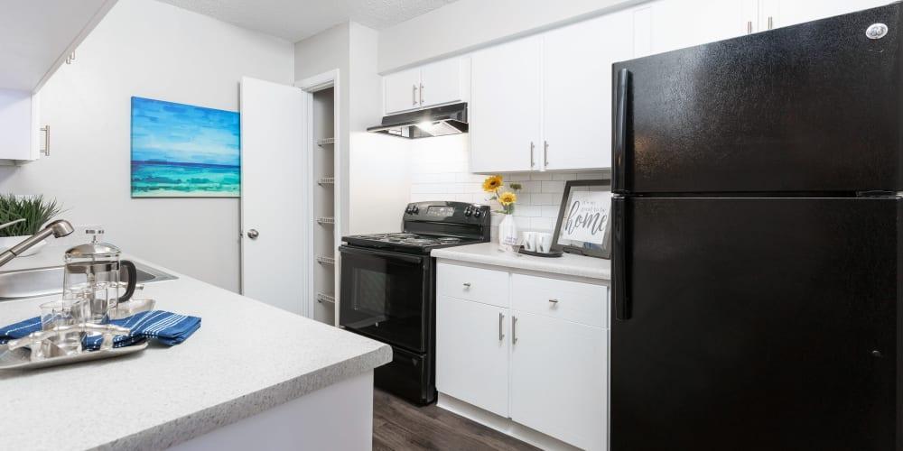 Beautiful kitchen at Avion at Carrollwood in Tampa, Florida