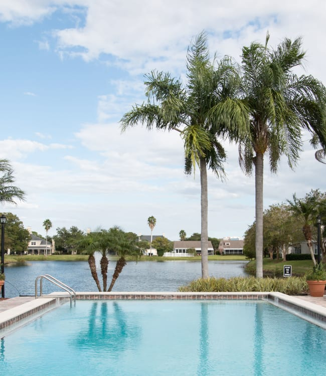 The pool with palm trees next to it at Fairways at Feather Sound in Clearwater, FL