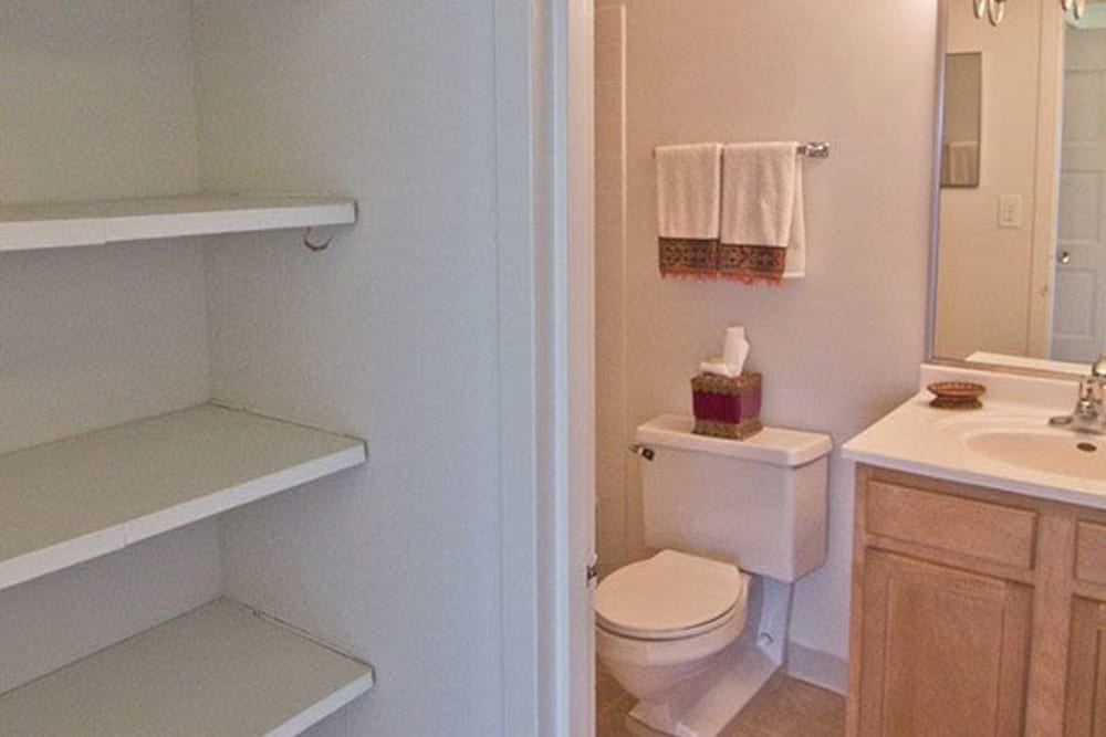 Bathroom and closet at Park Towers Apartments in Richton Park, Illinois