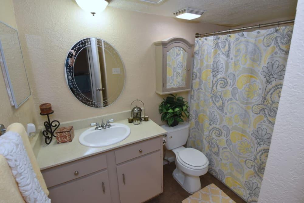 Falls of Maplewood Apartments bathroom