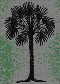 Palm tree illustration for Arcadia Decatur in Decatur, Georgia