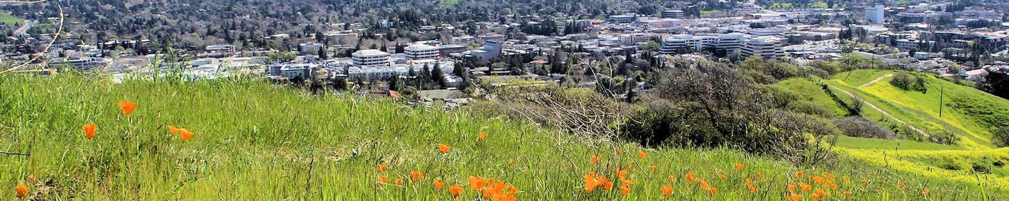 Community map at Flora Condominium Rentals in Walnut Creek, California