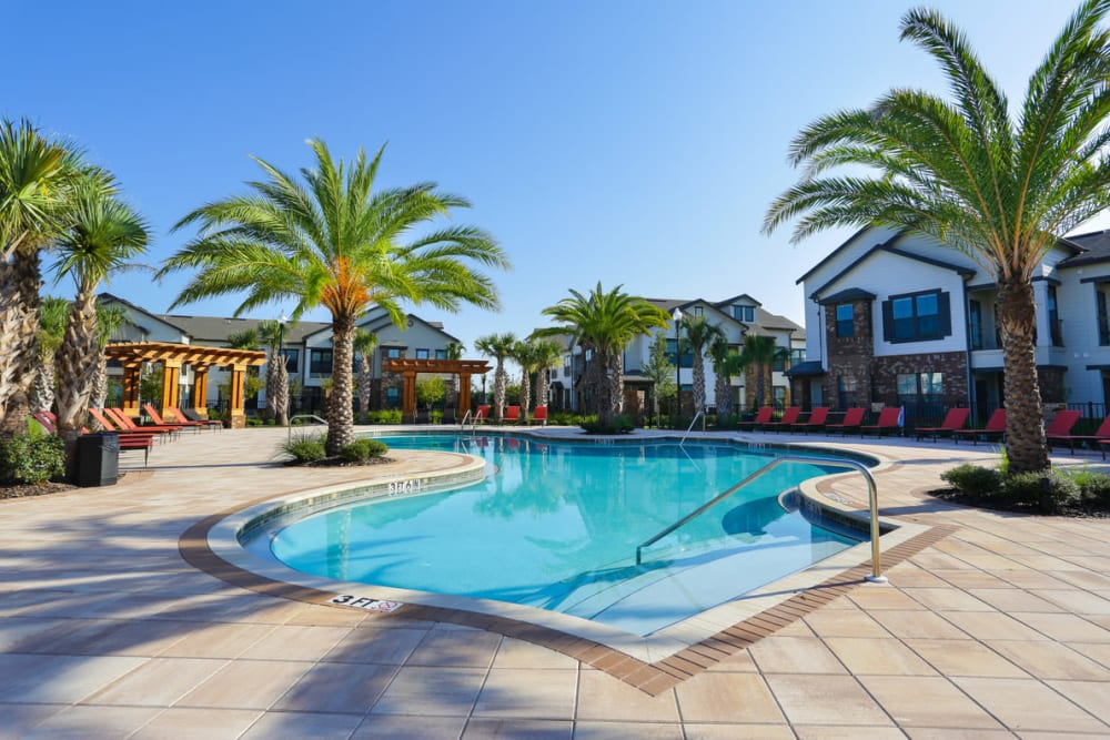 Swimming pool surrounded by palm trees at The Hawthorne in Jacksonville, Florida