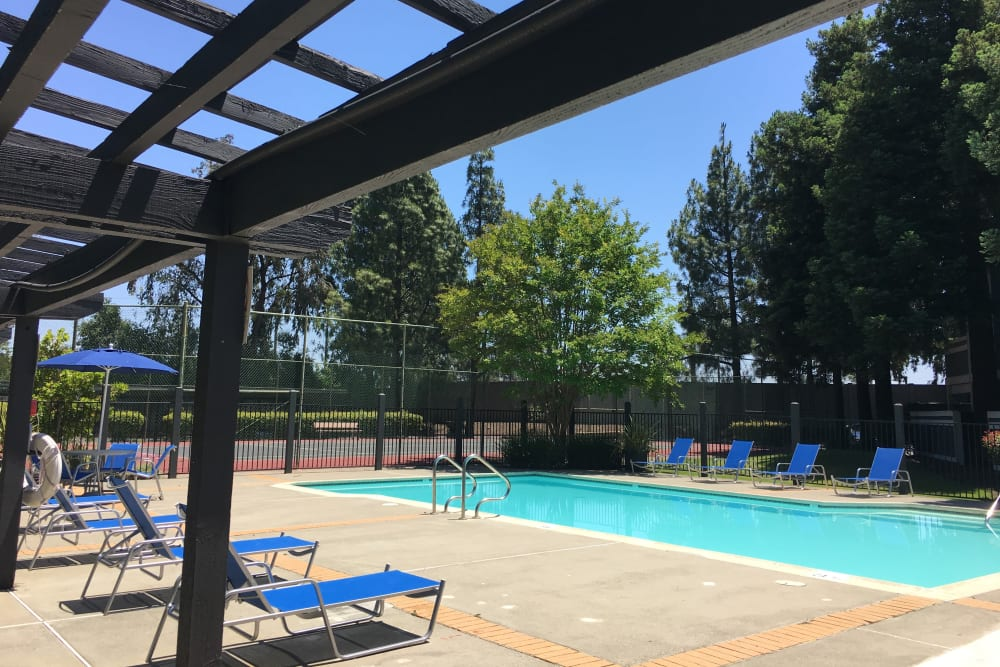 Beautiful resort-style swimming pool with a lush backdrop at Avery Park Apartments in Fairfield, California
