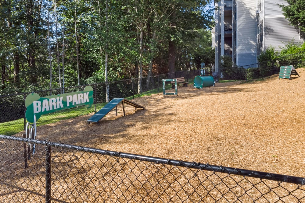 Dog park with toys and obstacles at HighGrove Apartments in Everett, Washington