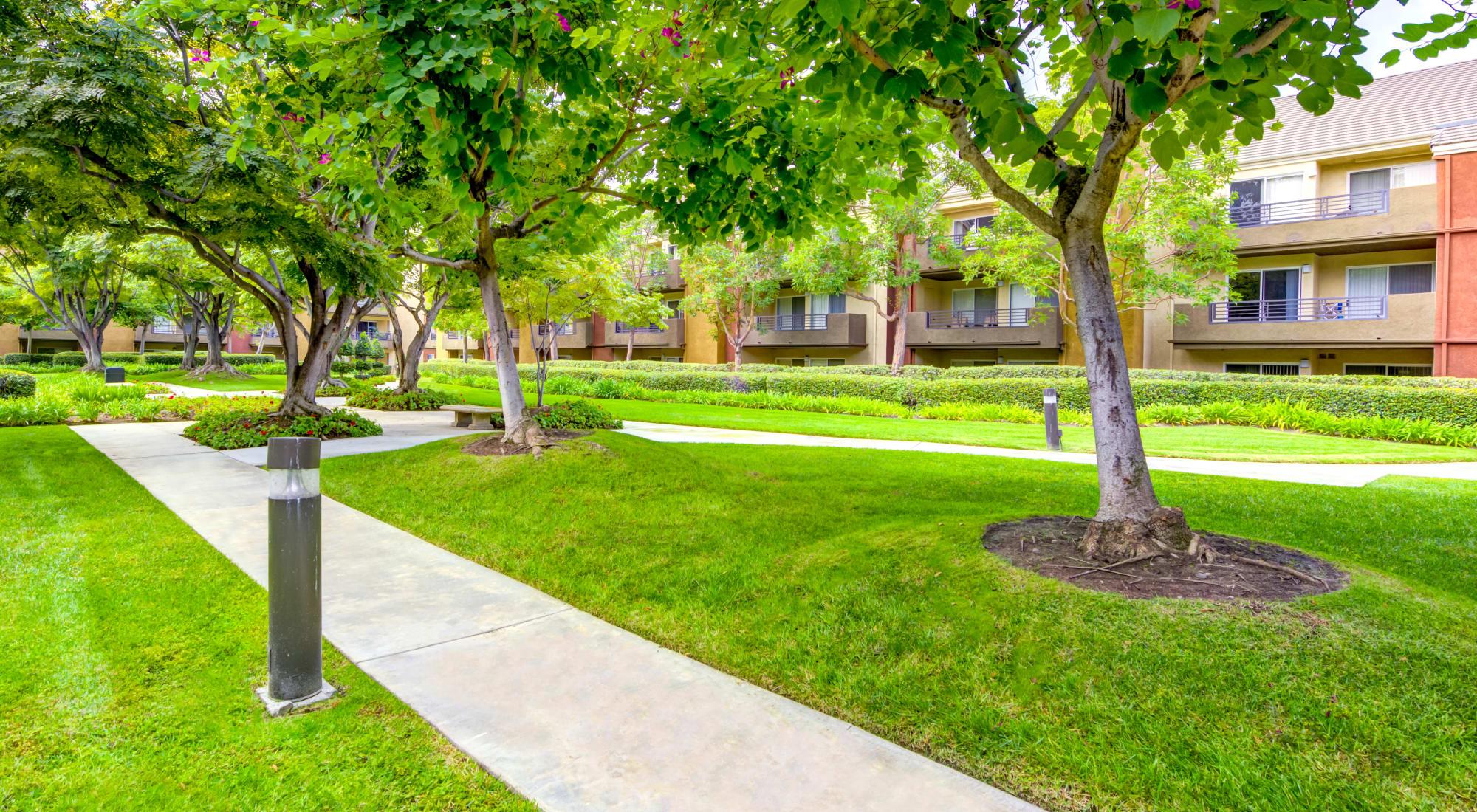 Neighborhood at Sofi Irvine in Irvine, California