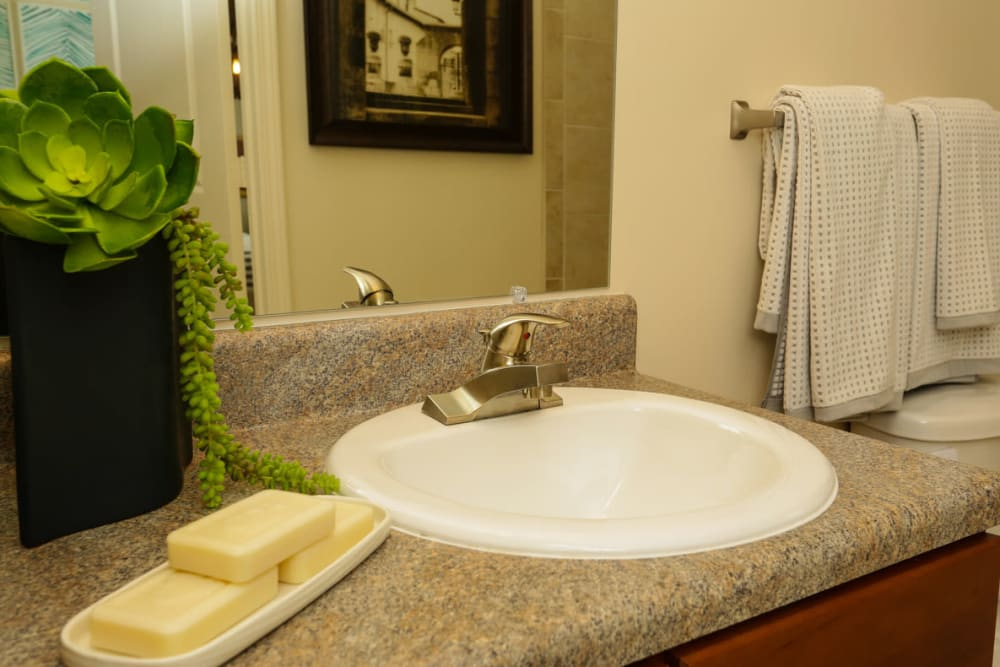 Granite countertop in a model home's bathroom at The Hawthorne in Jacksonville, Florida