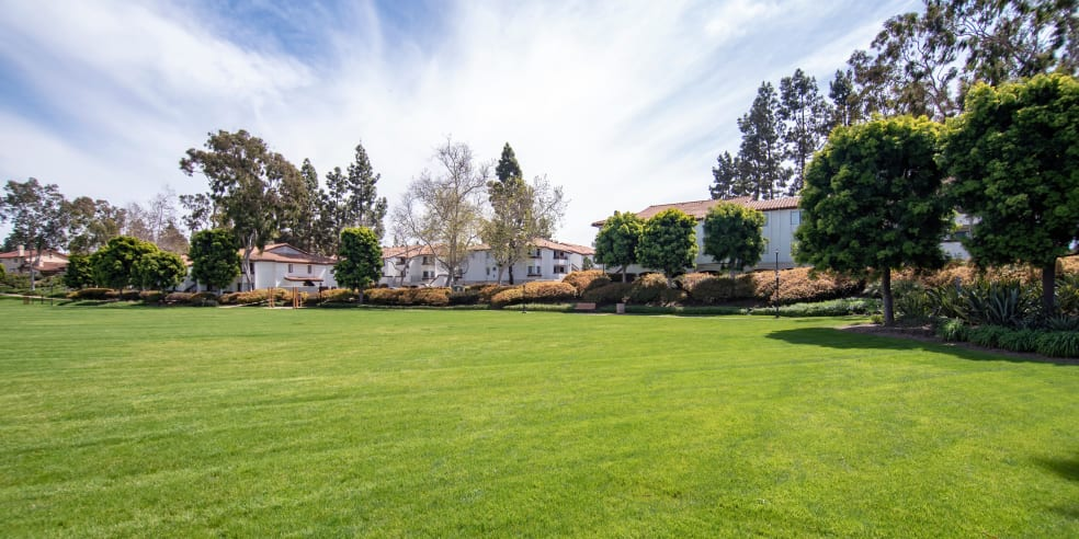 Avana La Jolla Apartments offers a large grassy area great for pets in San Diego, California