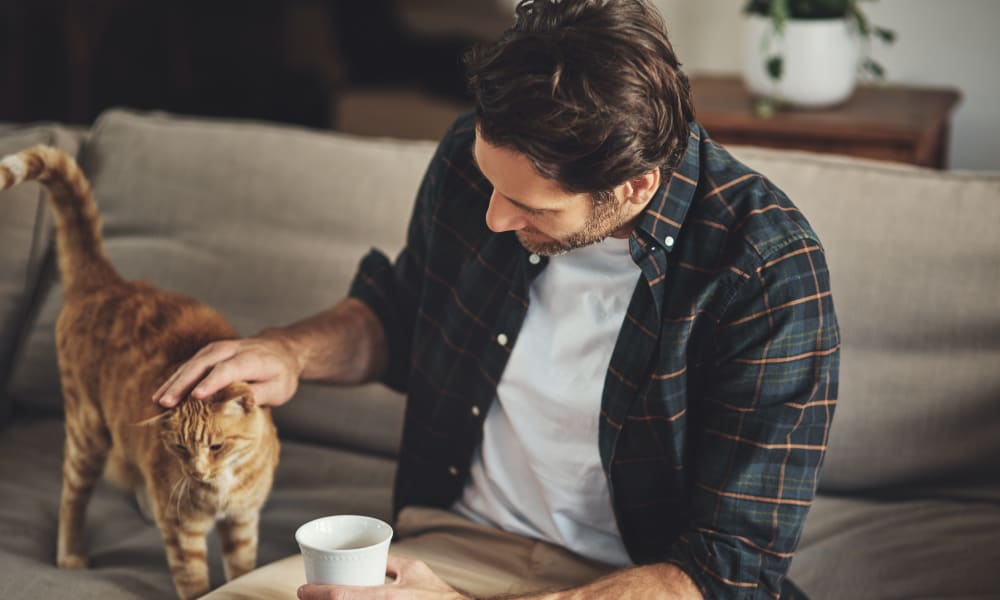 Resident petting their cat at Oaks Minnehaha Longfellow in Minneapolis, Minnesota