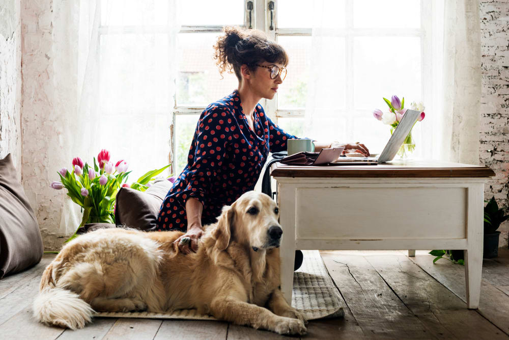 A woman and her dog in their apartment at Hillside Terrace Apartments in Lemon Grove, California