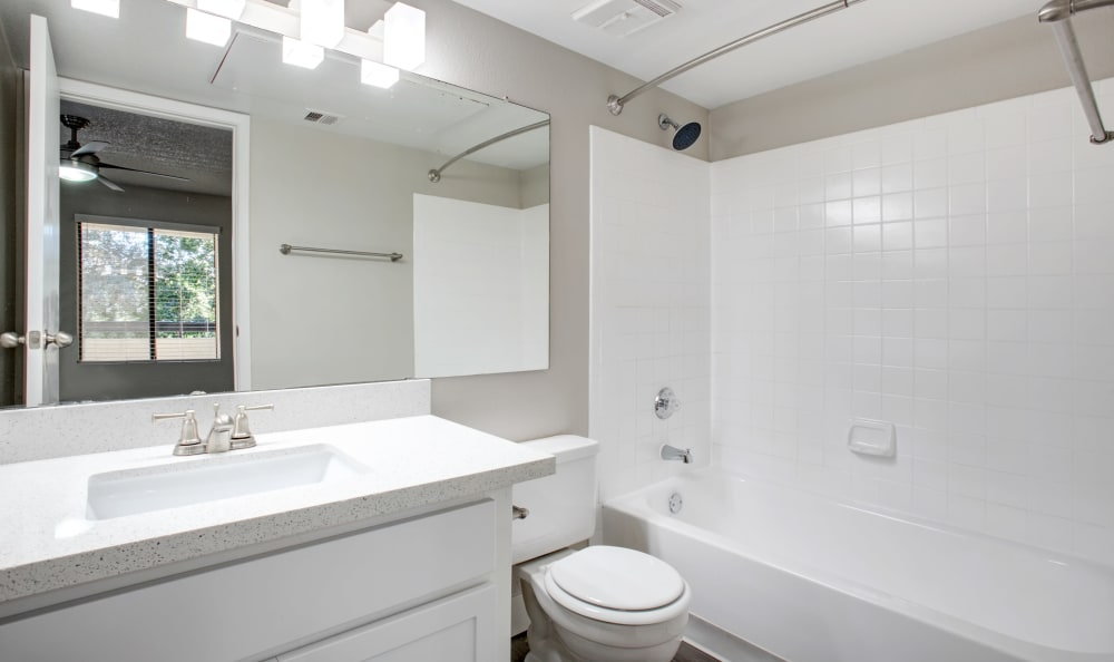 Apartments with a clean bathroom in Tempe, Arizona