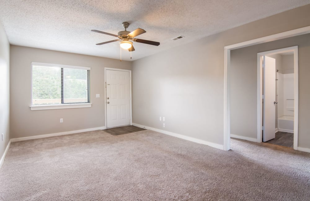 Living room with plush carpeting and a large window at 1022 West Apartment Homes in Gaffney, South Carolina