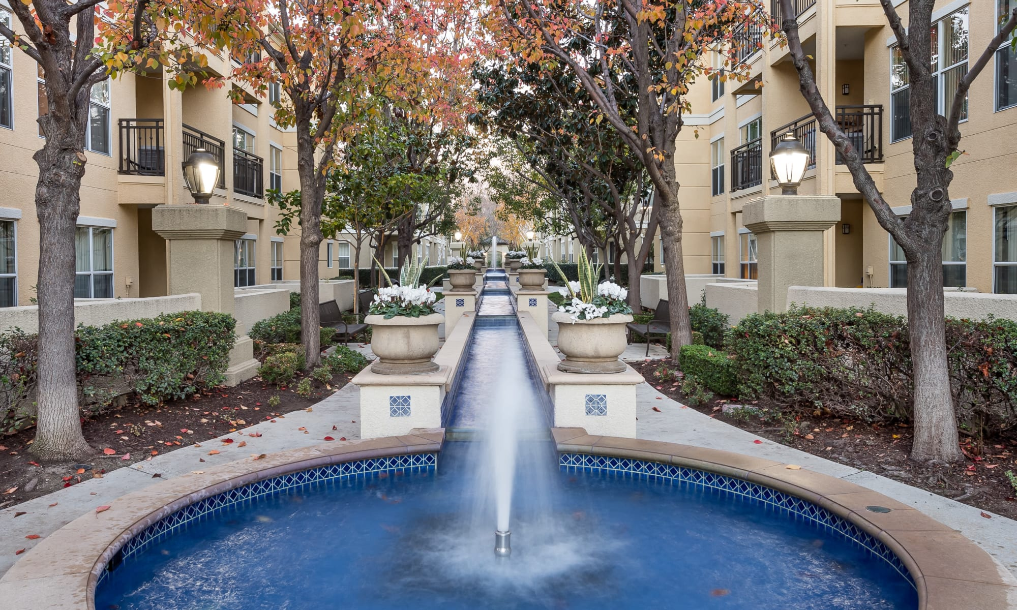 Apartments at The Carlyle in Santa Clara, California