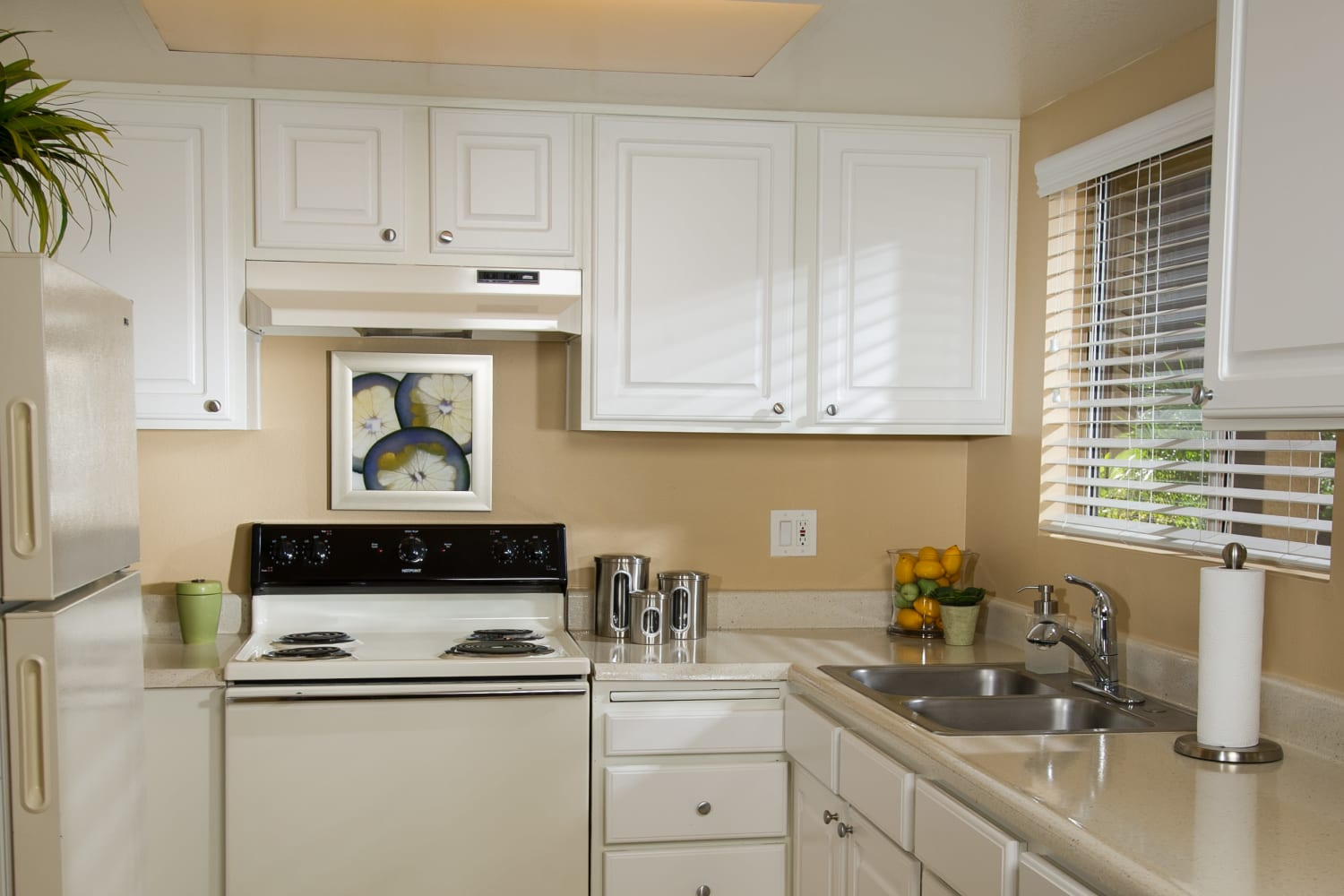 Kitchen at Legacy at Westglen in Glendale, California