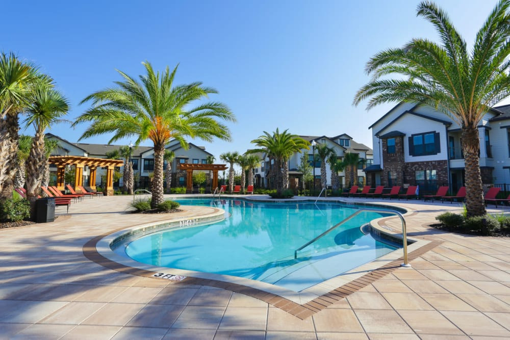 Palm trees around the swimming pool at The Hawthorne in Jacksonville, Florida