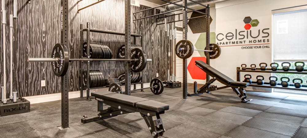 Full weight room area at Celsius in Charlotte, North Carolina