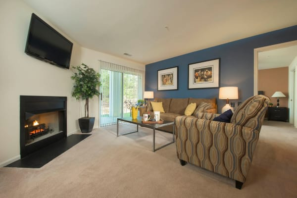 Cozy living room at Park Villas Apartments in Lexington Park, Maryland