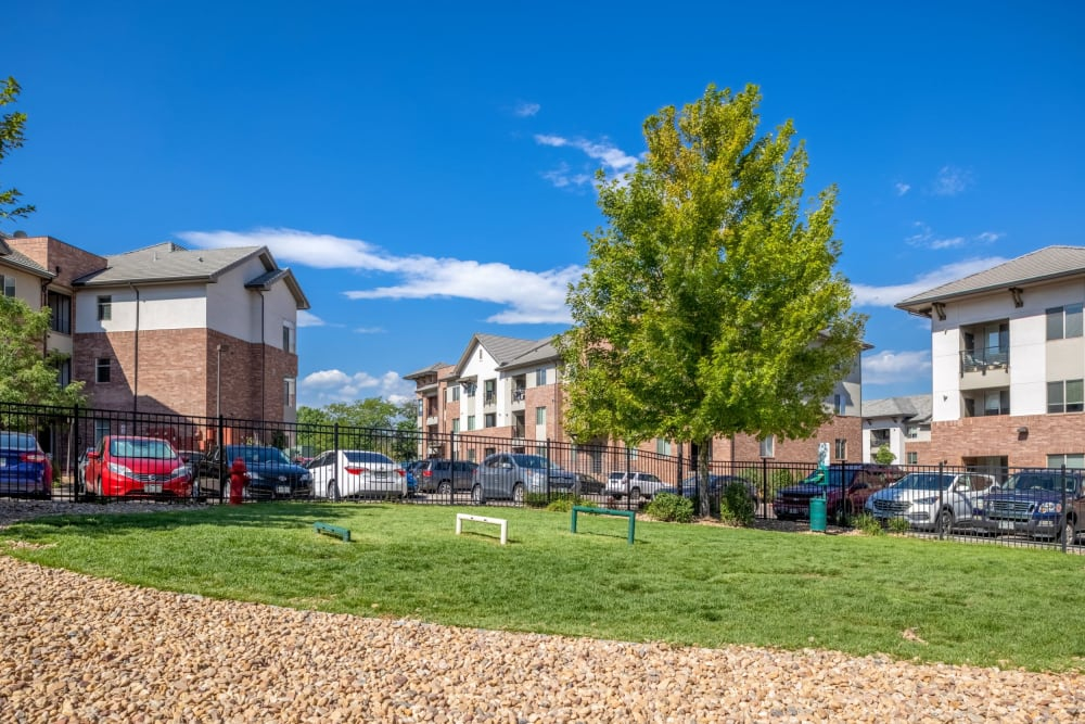Bark Park dog play area at The Parc at Greenwood Village in Greenwood Village, Colorado