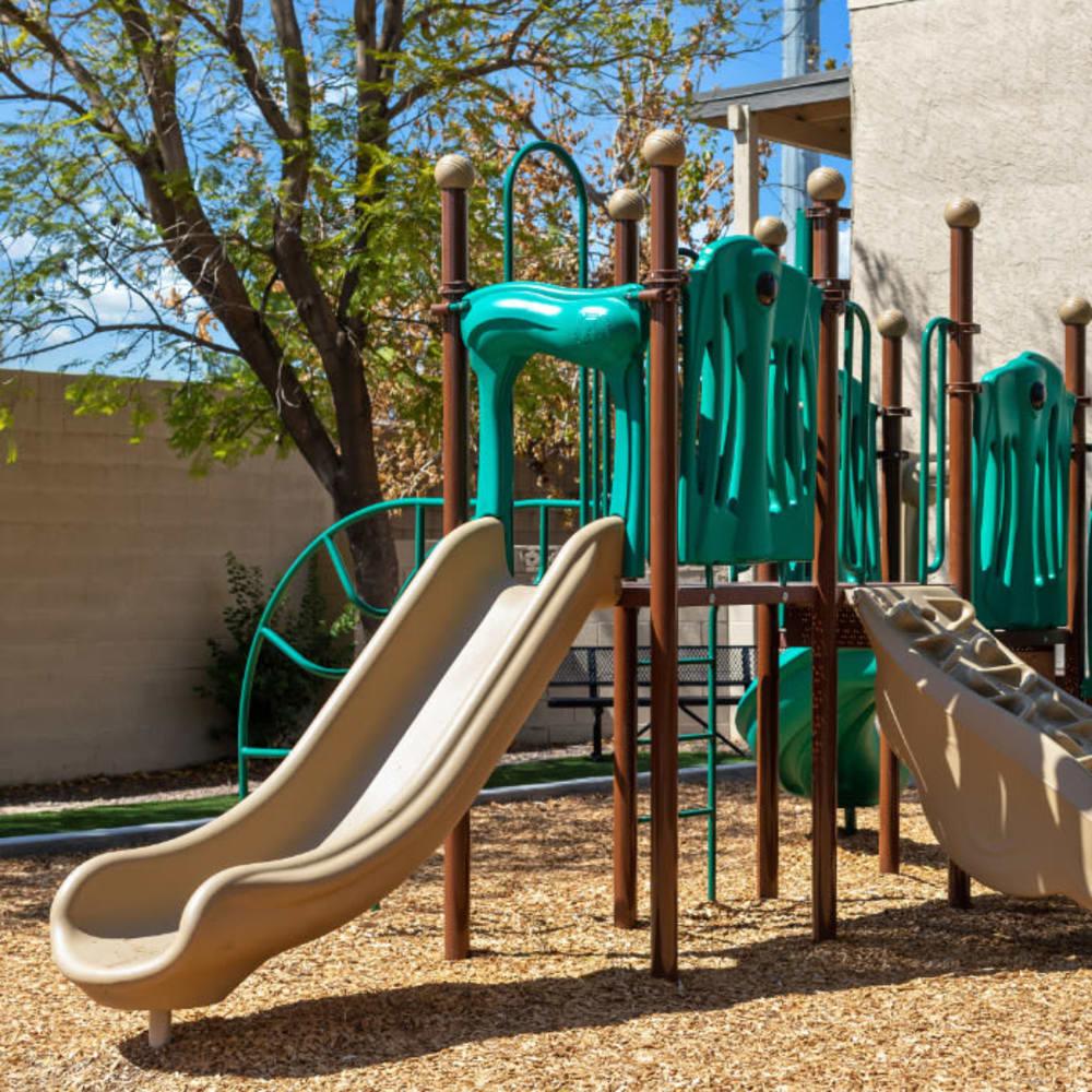 An onsite children's playground at 1408 Casitas at Palm Valley in Avondale, Arizona