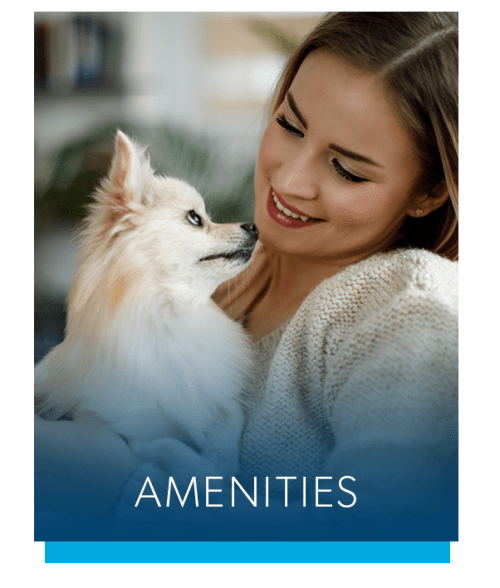View the amenities at Henrietta Highlands in Henrietta, New York