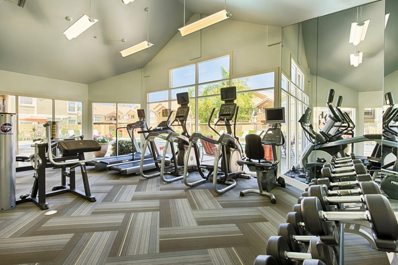 Fitness area at Sonoran Vista Apartments in Scottsdale, Arizona