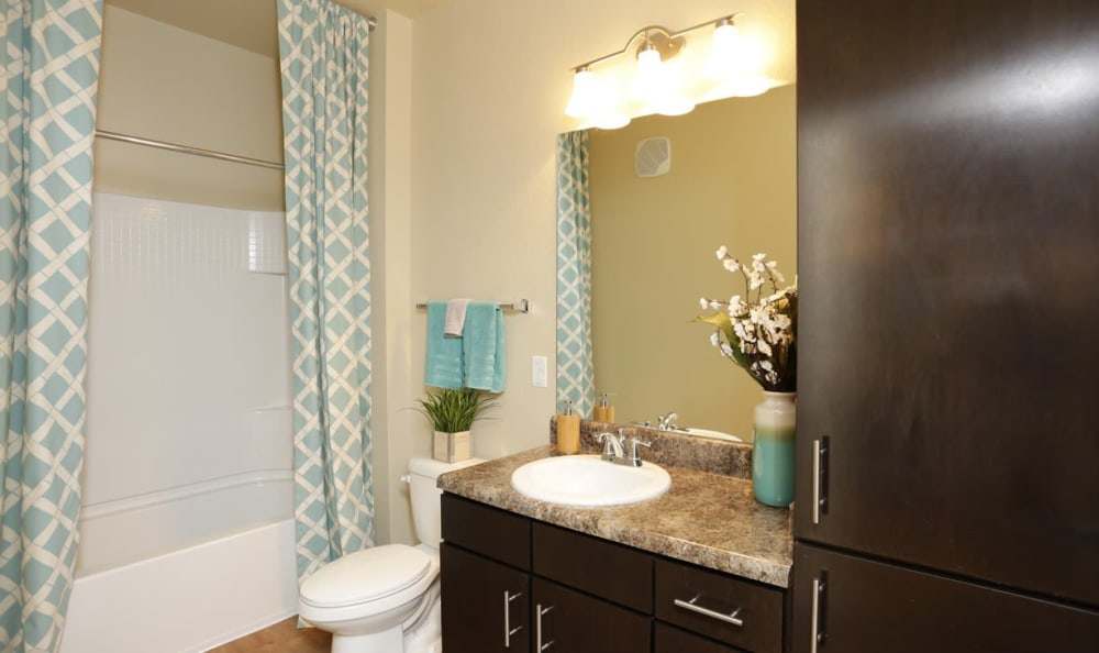 bathroom at Springs at Six Mile Cypressin Fort Myers