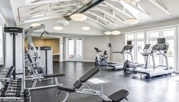 fitness center at Rosemont Square Apartments in Randolph