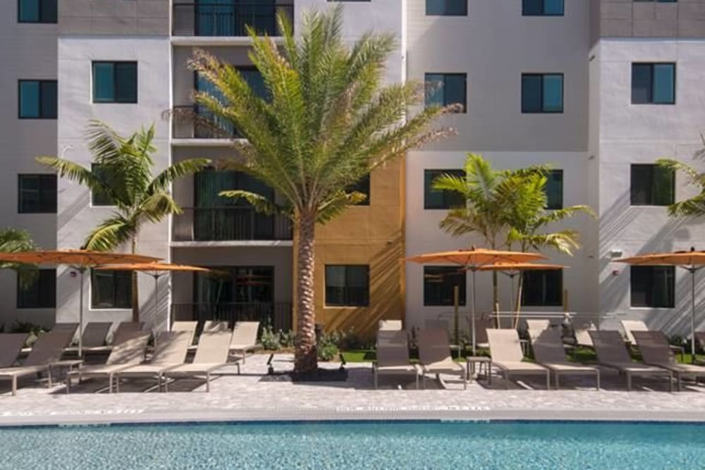 Beachy feel everywhere you go with palm trees on site at University Park in Boca Raton, Florida