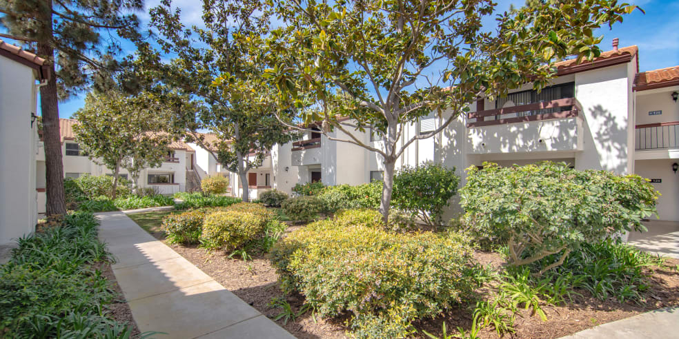 Avana La Jolla Apartments in San Diego, California offers landscaped apartments