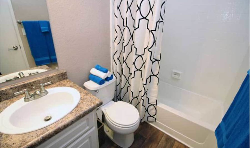 Picture of a bathroom from one of the units