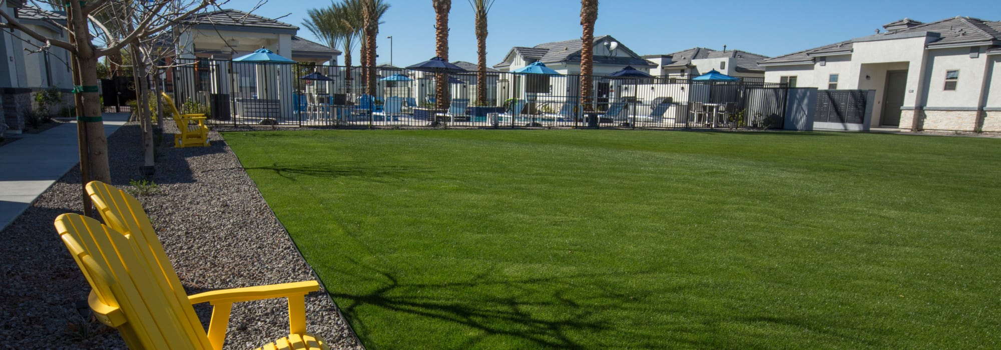Expansive green lawn at Christopher Todd Communities at Country Place in Tolleson, Arizona