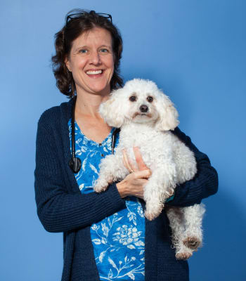 Dr. Karen Heffernan at North Paw Animal Hospital in Durham, North Carolina