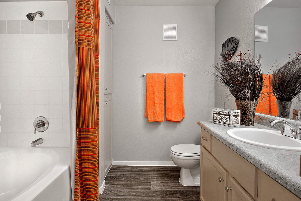Ample bathroom at Cielo Apartment Homes in Henderson, Nevada