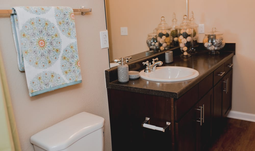 Guest Bathroom at Springs at Creekside in New Braunfels, TX