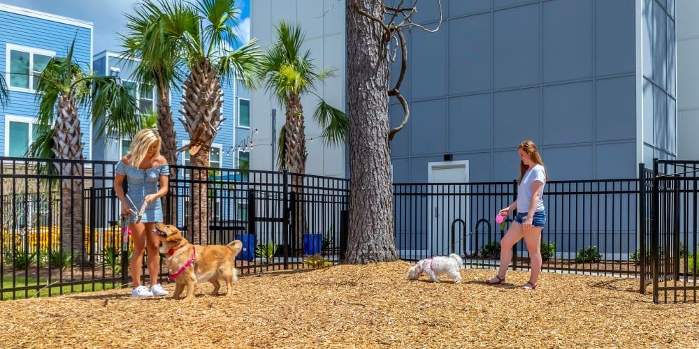 Dog park at UNCOMMON Wilmington in Wilmington, North Carolina