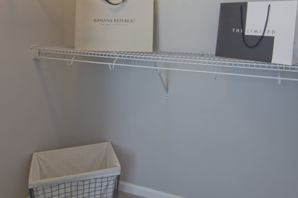 Walk-in closet at Overlook Apartments in Elsmere, Kentucky