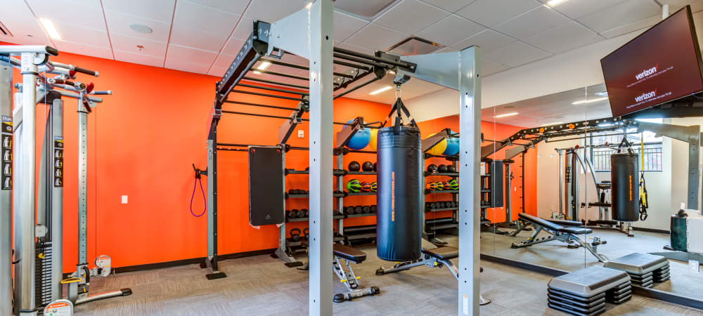 State of the art weights area at Main Street Apartments in Rockville, Maryland