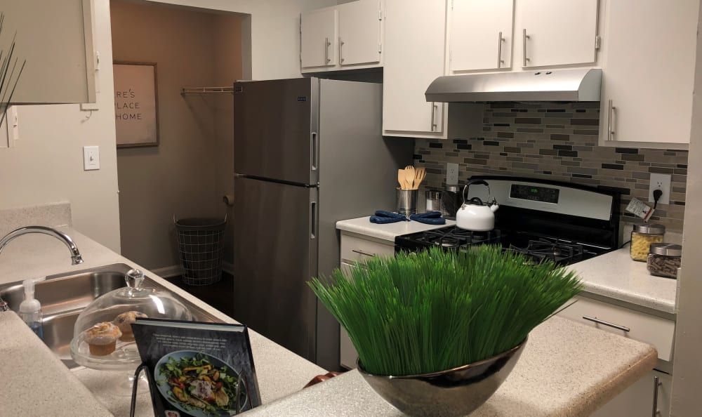 Kitchen with green plant at The Park at London in Ellenwood, Georgia