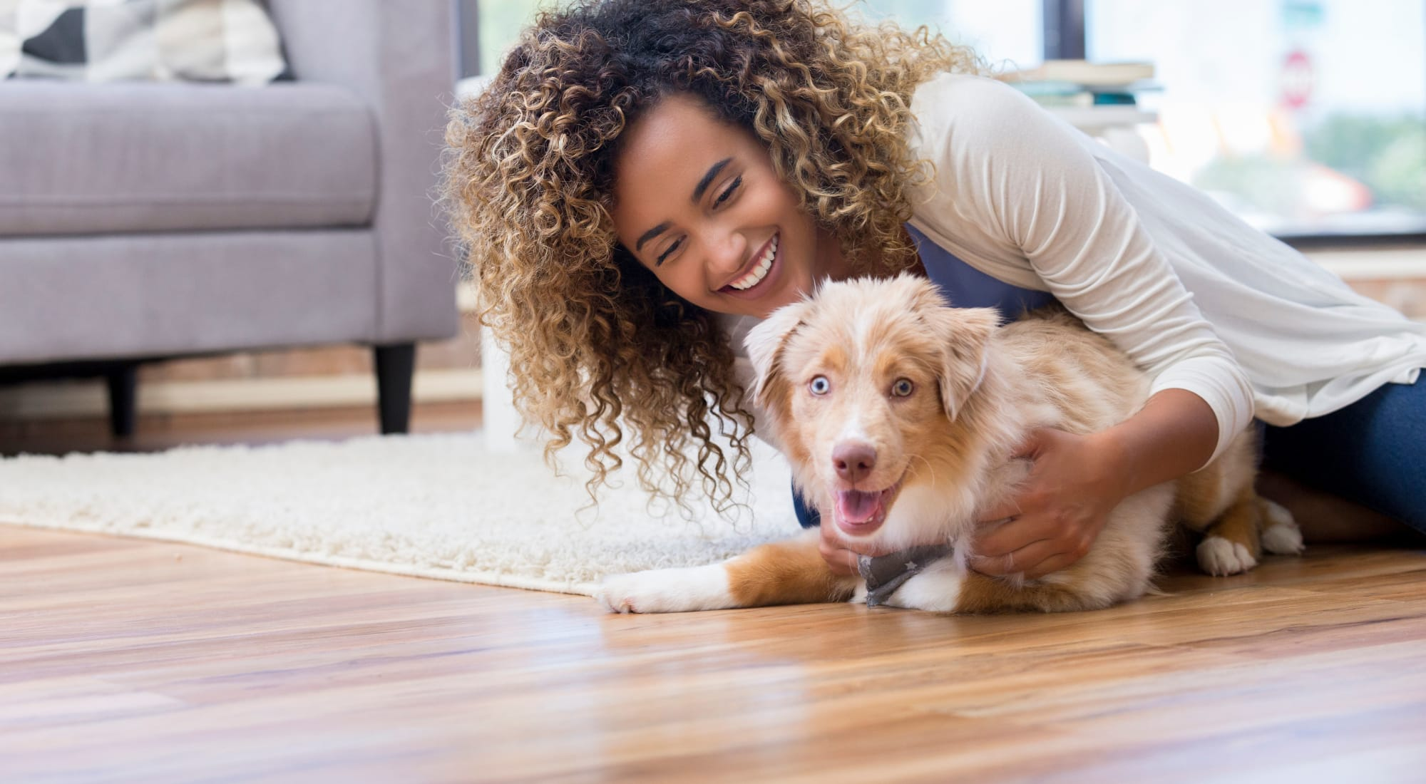 Pet-friendly apartments at The Alcott in Denver, Colorado