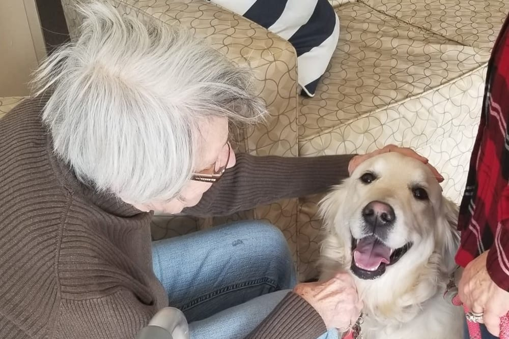 A resident visiting with a dog at The Woods of Caledonia in Racine, Wisconsin