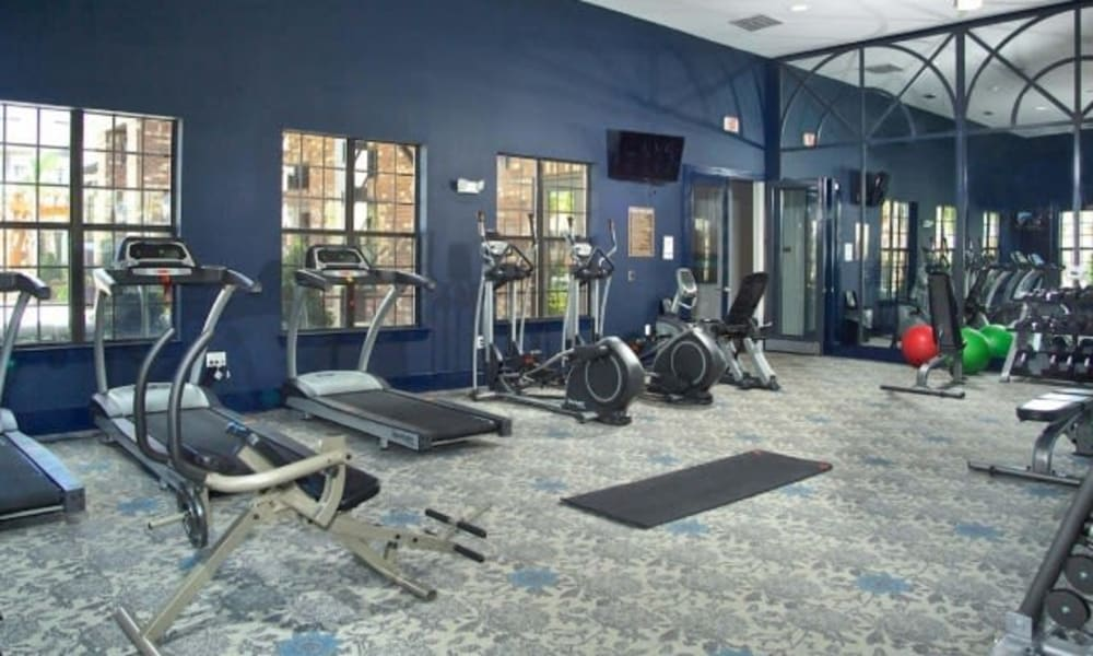 Ample exercise equipment in the fitness center at The Hawthorne in Jacksonville, Florida