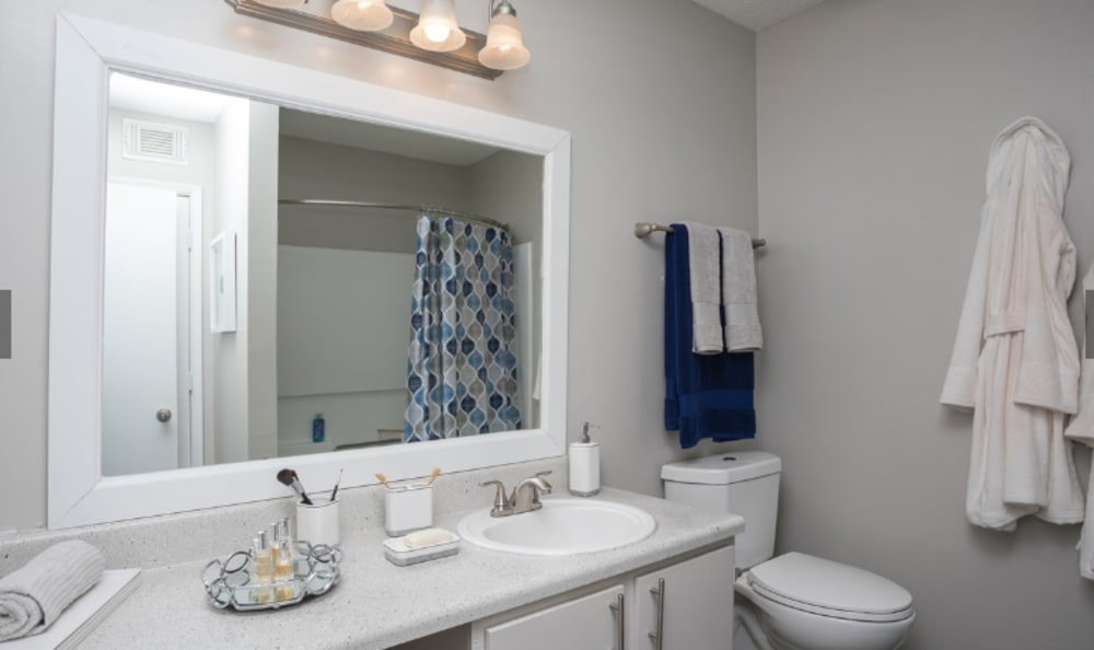 Bathroom with blue accents at The Park at London in Ellenwood, Georgia