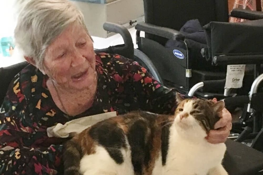 Pet lovers at Sundial Assisted Living in Redding, California