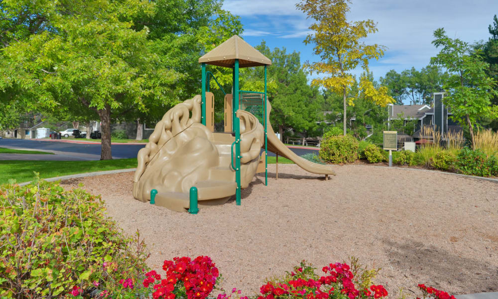 Spacious playground at Environs Residential Rental Community in Westminster, Colorado
