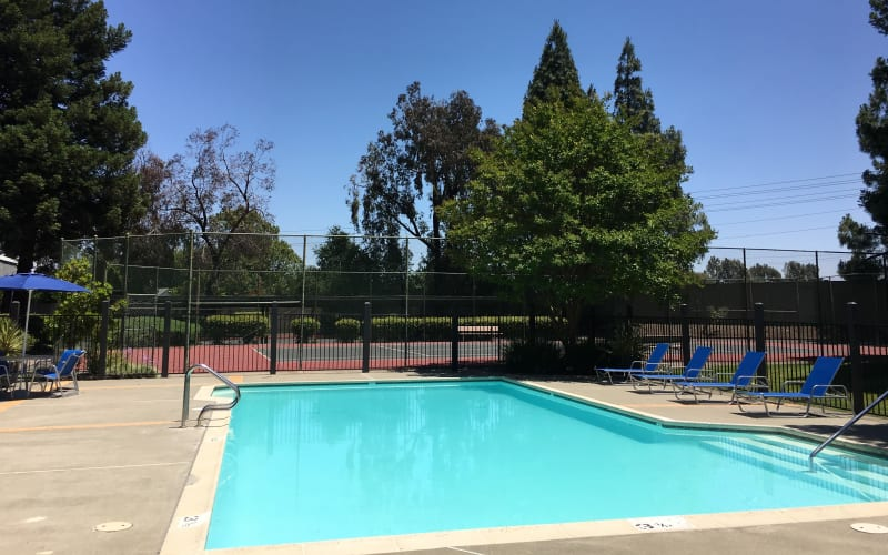 The vibrant blue swimming pool at Avery Park Apartments in Fairfield, California