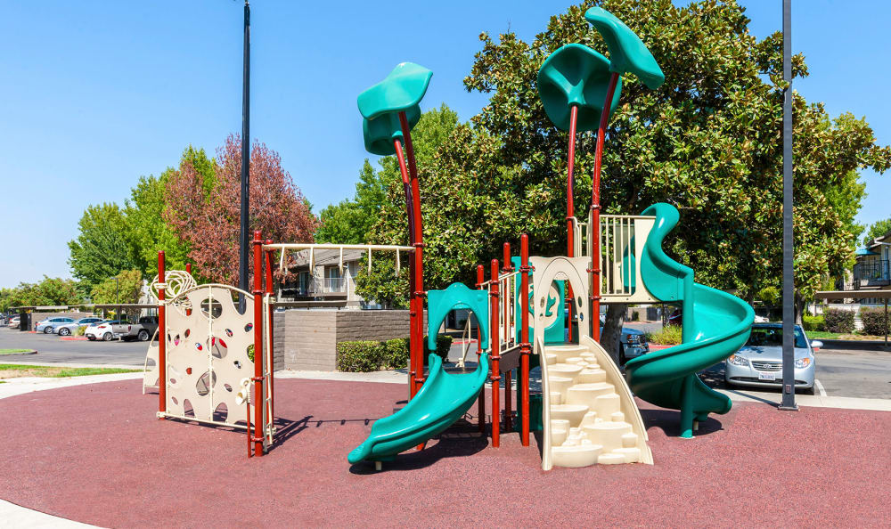 Playground at The Woodlands Apartments