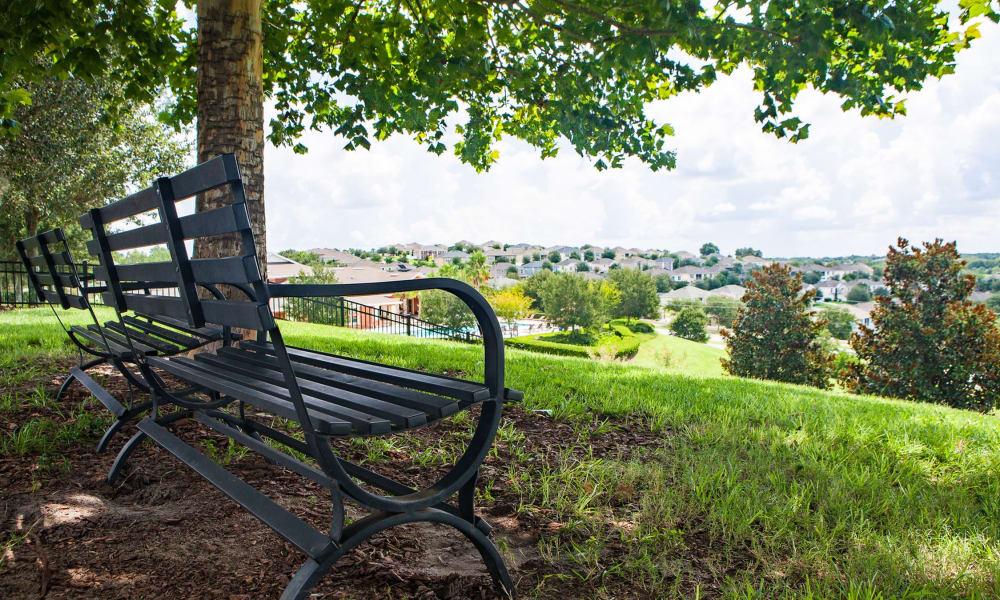 Park bench at Vista at Lost Lake